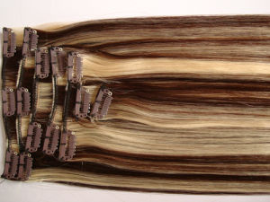 Fashion Color Clip on Hair Extension (WHH-CP-017) pictures & photos