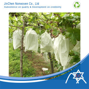 PP Nonwoven Fabric for Fruit Cover, Grape Cover pictures & photos