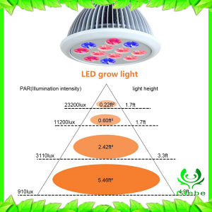2017 New Spot LED Grow Light for Green House 360 Degree Flexible Gooseneck Indoor Plant Light pictures & photos