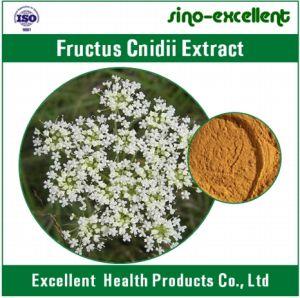 Pure Fructus Cnidii Powder Extract, Fructus Cnidii P. E. Osthole