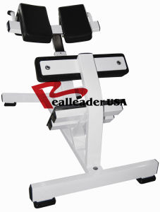 Fitness Equipment for Hyperextension (FW-2006) pictures & photos