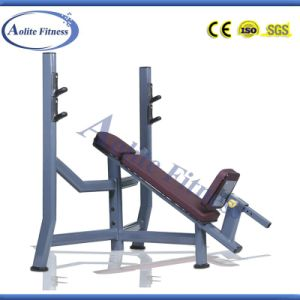 Incline Bench/Indoor Fitness Equipment/Body Building Equipment pictures & photos