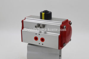 Bt Pneumatic Actuator of Different Seal Material (NBR/VITON) pictures & photos