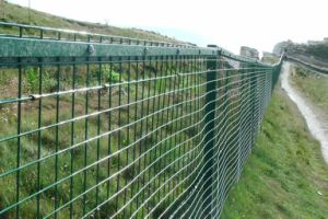 Wire Mesh Fencing (high quality) pictures & photos