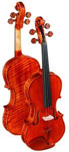 Flamed Violin (LCV300)