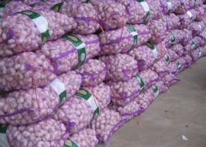 China New Quality Fresh White Garlic pictures & photos