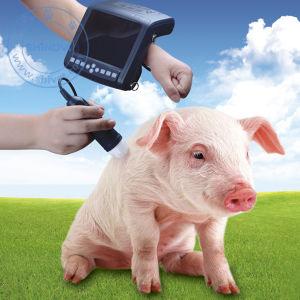 Veterinary Digital Ultrasound Scanner (MSU1) pictures & photos
