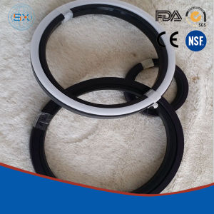 PTFE Spgw Piston Compact Seal pictures & photos