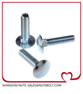 Stainless Steel 304 316  DIN603 Carriage Bolt pictures & photos