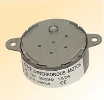 Synchronous Motor (42TYZ)