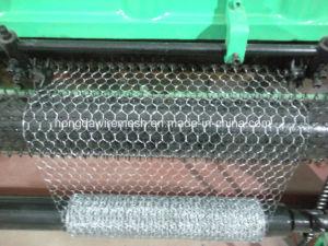 1/2′′, 3/4′′mesh Double Twist Chicken Wire Hexagonal Wire Mesh Machine pictures & photos