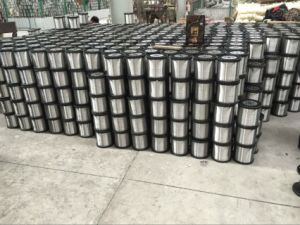 Fine 304, 316, 316L Stainless Steel Wire for Mesh Weaving pictures & photos