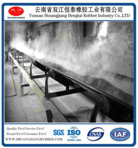 Cold Resistant Conveyor Belt (-20 degree) pictures & photos