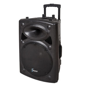 PA Speaker Recording Function Amplifier Pl-812/815 Professional Loudspeaker pictures & photos