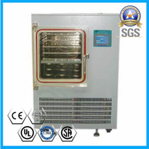Vacuum Freeze Dryer for Banana/ Strawberry/ Apple/Herb pictures & photos