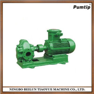 High Quality Oil Gear Motor-Driven Cast Iron Horizontal Pump pictures & photos