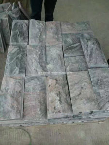 Multi-Color Red Granite, Mushroom Processing Wall Tile for Outside Project pictures & photos