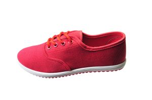 Fashionable Canvas Shoes for Woman pictures & photos