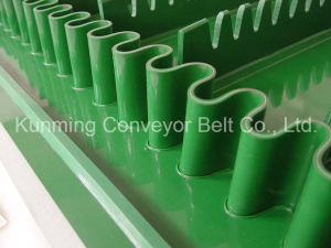 PVC Conveyor Belt (produce by customer requirement) pictures & photos