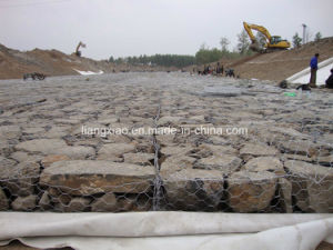 Godd Price for Gabion Walls (HPZS5002) pictures & photos