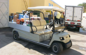 Material PP 2 Seaters Electric Golf Cargo Car pictures & photos