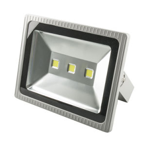 300W Outdoor LED Floodlight Cool White Garden Landscape Security Flood Lights pictures & photos
