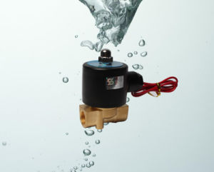 2W040-10 Solenoid Water Pipe Solenoid Valve 12V pictures & photos