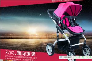 Wholesale Adjustable Handle Top Quality Baby Stroller pictures & photos