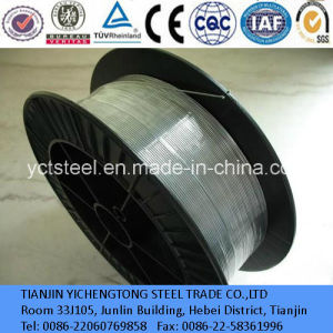 Er70-6 Stainless Steel Welding Wire with Flux-Core pictures & photos