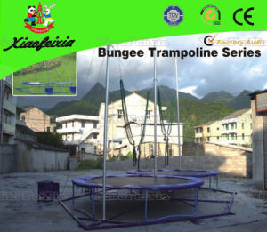 Double Person Round of Bungee Trampoline pictures & photos