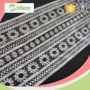 Beautiful Net and Organza Embroidery Flower Pattern Lace pictures & photos