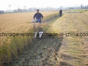 Agriculture Machine Self Propelling Farm Reaper (4G-120) pictures & photos
