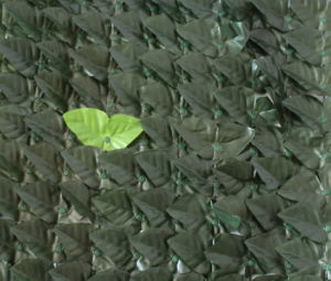 Plastic Leaves Artificial Hedge Fence for Garden (MW16006) pictures & photos