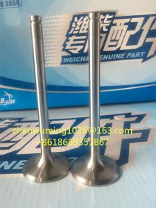 Weichai Engine Wp12 Intake Valve 61263005001 pictures & photos