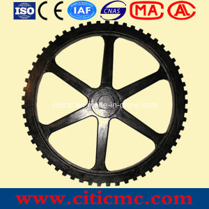 Gear Wheel &Worm Gear pictures & photos