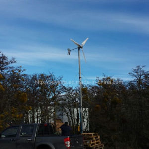 High Quality 3kw Wind Turbine Wind Power Generator pictures & photos