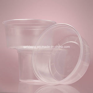 Chinese Factory OEM Clear Plastic Food Container (PP 011) pictures & photos