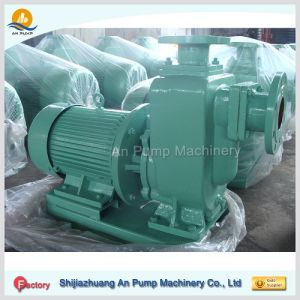 Horizontal Jet Self Priming Electric Water Pump pictures & photos