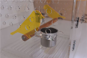 2016 New Nice Watching Acrylic Bird Carriers/Cages pictures & photos