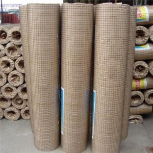 The Best Price in China Factory Galvanized Welded Wire Mesh pictures & photos