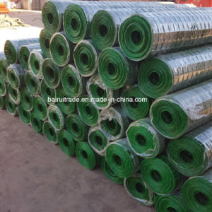 Chain Link Fence Mesh for China pictures & photos