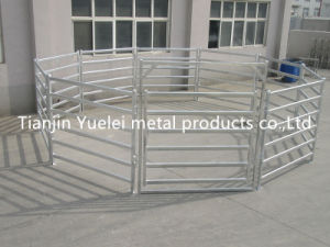 6 Rail Galvanized Cattle Panels pictures & photos