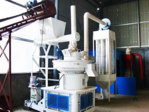 Yfk880 Biomass Pellet Production Line pictures & photos