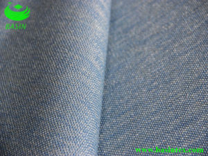 Polyester Flame Sofa Fabric (BS6047) pictures & photos