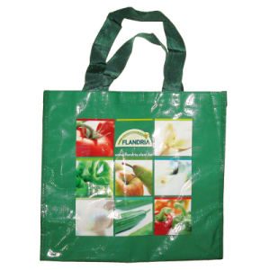 Excellent PP Woven Fashion Shopping Bag with Fruit Design