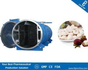 Commercial Vacuum Freeze Dryer for Mangosteen pictures & photos