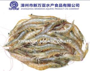 China Raw Frozen Vannamei Shrimp on Sale
