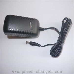 Li-ion/Polymer/LiFePO4 Digital -Charger pictures & photos