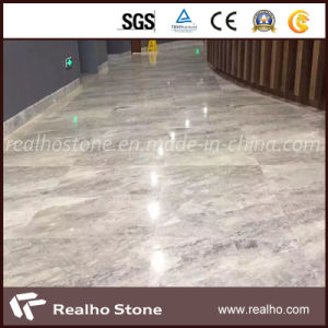 China Marble Abba Grey Floor Tile pictures & photos