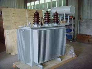 33kv Oil Immersed Distribution Transformer pictures & photos